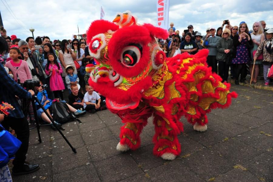 Dragon Boat Festival 2014-9006